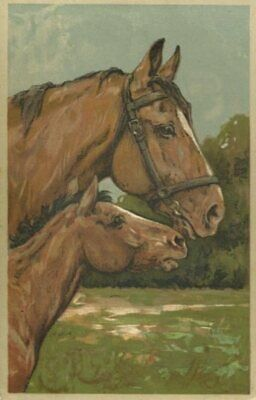 HORSES ~ MARE AND FOAL FINE OLD ARTISTIC postcard