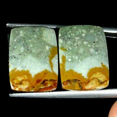 14.20Cts Natural American Picture Jasper Cushion Pair Cabochon Loose Gemstone