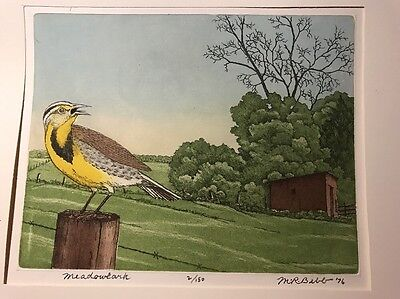 M. R. BEBB Meadowlark Limited ED 2/150 COLOR ETCHING BIRD PICTURE 1976 Art