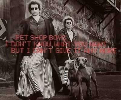 """Pet Shop Boys I Don't Know What You Want [CD1] CD single (CD5 / 5"""") German"""