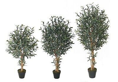 Best Artificial Olive Tree Tropical Plant Office Conservatory