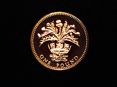 1984 ROYAL MINT PROOF ONE POUND COIN - Scottish Thistle Design