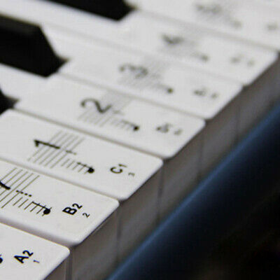 Keyboard Piano Removable Piano And Keyboard Stickers For 88 Keys 61 Pcs/Set LOT