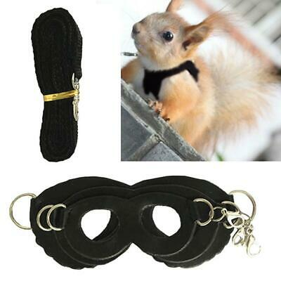 Sugar Glider Outdoor Traction Rope Hamster Squirrel Small Pet Chest Strap Windpr