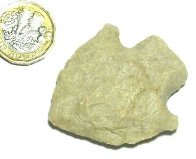 LARGE USA FOUND RARE NEOLITHIC CHERT ARROWHEAD POINT ref137