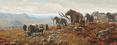 Screensaver  Extinct Ice Age Scenery Free Economy Shipping 515 Worldwide Picture
