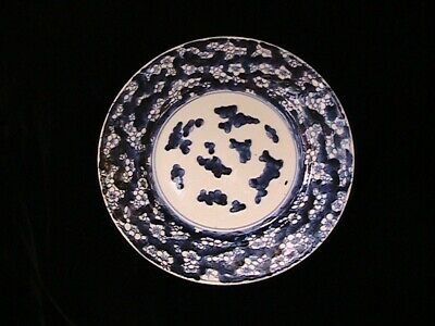 Qing Dynasty Chinese Porcelain Crackled Ice & Prunus Blossom Blue & White Plate
