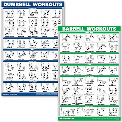 LAMINATED DUMBBELL WORKOUT Poster For Home Gym MADE IN USA