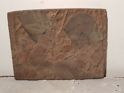 Rare Antique Ancient Egyptian Stela pharaoh Akhenaten Nefertiti Sun1353–1336BC