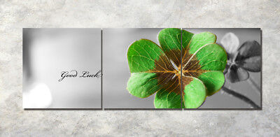 "Lucky clover 16x16"" Art Printed Painting on Canvas 3Parts Home Wall Decor 1372"