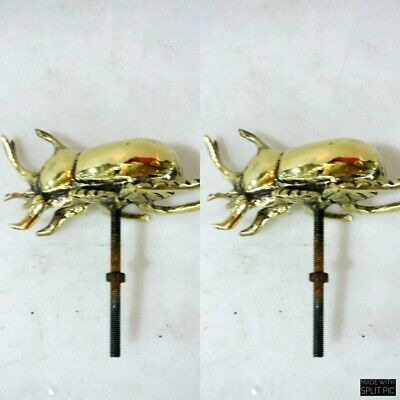 "2 small brass rhinoceros beetle Knobs bolt old style door polished 4"" heavy B"
