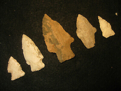 5 Authentic Oklahoma Missouri Prehistoric Arrowheads, Indian Artifacts, #OM4