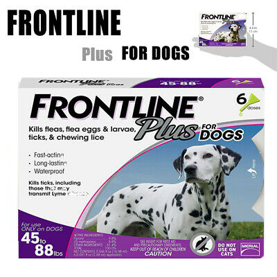Frontline Plus for Dogs Large Dog(45-88 lbs)Flea and Tick Treatment,6 Doses