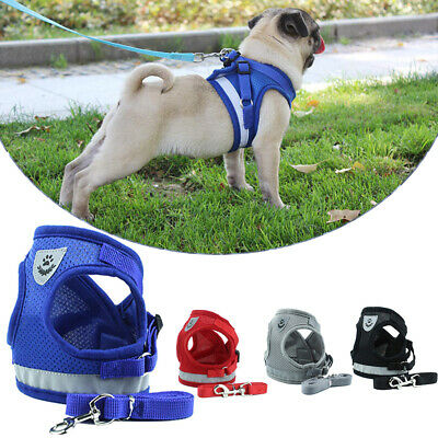 Pet Cat Dog Leash Control Harness Puppy Soft Mesh Walk Collar Safety Strap Vest