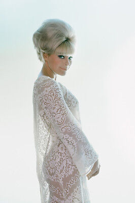 Elke Sommer beautiful secy pose in see-thru white dress 1967 24x36 Poster