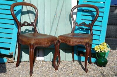 Antique Victorian Mahogany & Leather Balloon Back Chairs, Interior Decorators