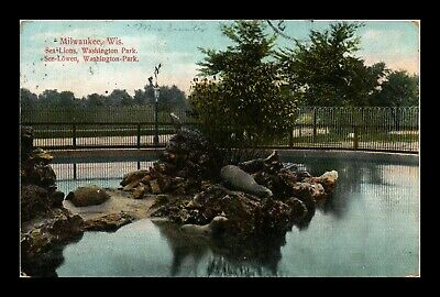 Dr Jim Stamps Us Sea Lions Washington Park Milwaukee Wisconsin Postcard
