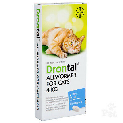 NEW Drontal for Cats Kitten 4 Tablets Tapeworm Dewormer Roundworm Track Online.