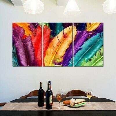 Colorful Feathers Home Canvas Art Poster Living Room Hanging Picture Frameless