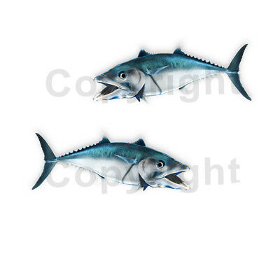 King Mackerel Decals Fish Stickers Tackle Box RV Truck Trailer AFP-0027