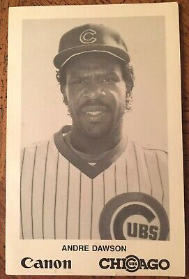 Chicago Cubs Andre Dawson Canon Photo