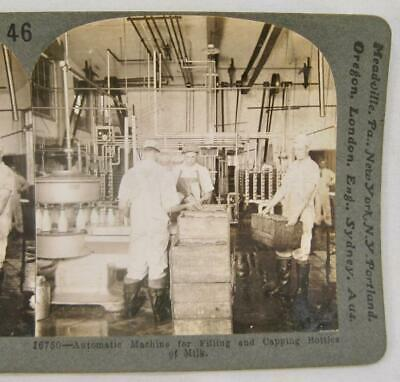 Stereoview Keystone 16750 Automatic Machine For Filling Capping Milk Bottles (O)