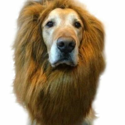Halloween Clothes Fancy Dress Up Pet Costume Lions Mane Wig for Dog Cat UK