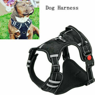 Breathable Mesh Harness Leash Pet Set Puppy Vest For Small Medium Large Dog