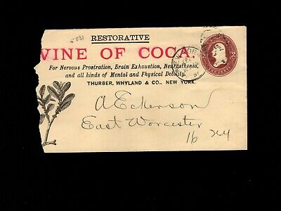 Quack Medicine Wine of Coca Cocaine Thurber & Wyland New York 1887 Cover 4h
