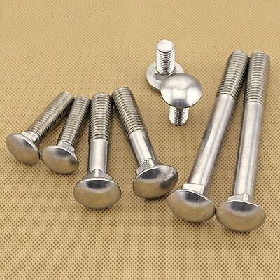 M6 M8 M10 M12 Coach Bolts Cup Square Carriage Bolt Screws 304 Stainless Steel