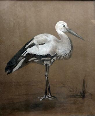 ANGLO JAPANESE PAINTING c1880 Bird MANNER OF HENRY STACY MARKS or E.W. GODWIN
