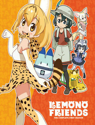 Kemono Friends: Complete First Season DVD
