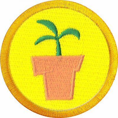 Disney WE 126-H Wilderness Explorer Scout Embroidered Iron On Patch