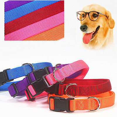 6 Colors New Luxury Nylon Strong Waterproof Padded Soft Adjustable Collar Lead