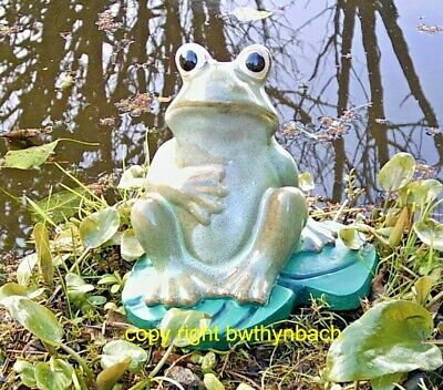 New Rubber Latex Mould Moulds Mold To Make Garden Concrete  Frog On Lilypad