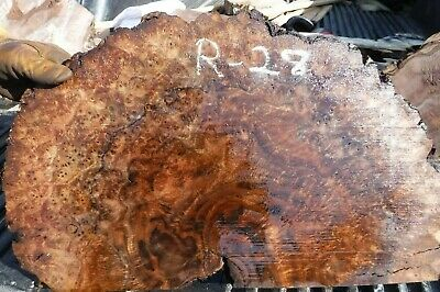 6-28 Very Figured Cross Cut Black Walnut Burl Slab  Turning Wood