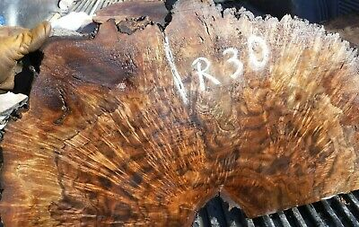 10-30 Figured Cross Cut Black Walnut Burl Slab  Turning Wood