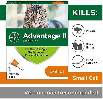 Bayer Advantage II for Large Cats Over 9 lbs - 1 Pack - NEW-FREE shipping