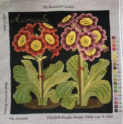 Completed Elizabeth Bradley tapestry/needlepoint. 'The Auricula'