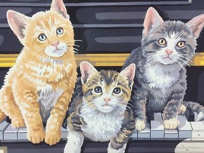 Paint by Numbers Cats PBN New  Musical Trio Dimensions 91144