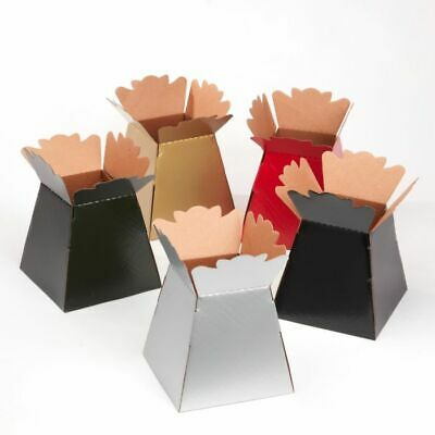 Box of 25 Glossy Porto Living Vase Transporter Boxes Assorted Christmas Colours