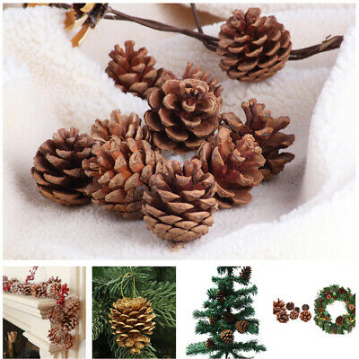 Natural Fir Pine Austriaca Cones Florist Wreaths Garlands Wedding Christmas C6