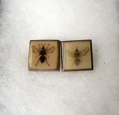 Antique Victorian Men's Cufflinks-Hand Painted Insects