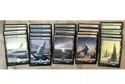 Modern Horizons 20X Snow Covered Basic Lands 100 Total MTG Magic the Gathering