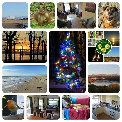 CHRISTMAS break at our dog friendly holiday cottage on ANGLESEY, N Wales