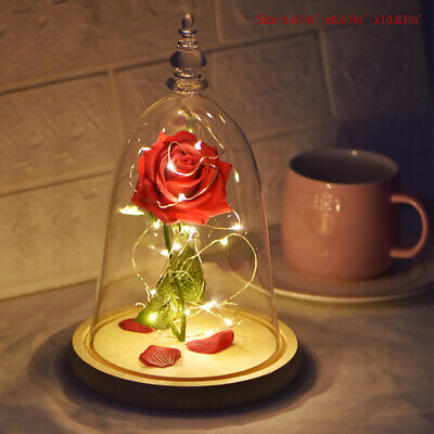 Beauty And The Beast Light-up Enchanted Rose Glass Dome Birthday Gifts For Mom