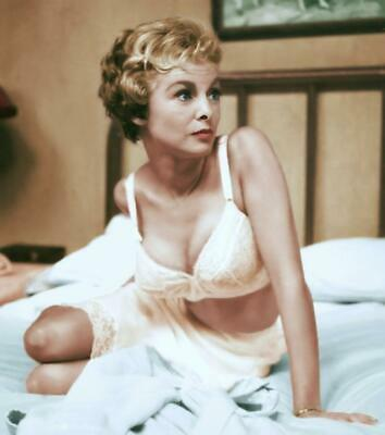 Janet Leigh A4 Photo 48