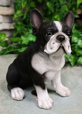 "Realistic Lifelike Black French Bulldog Puppy Dog With Glass Eyes Statue 7""Tall"
