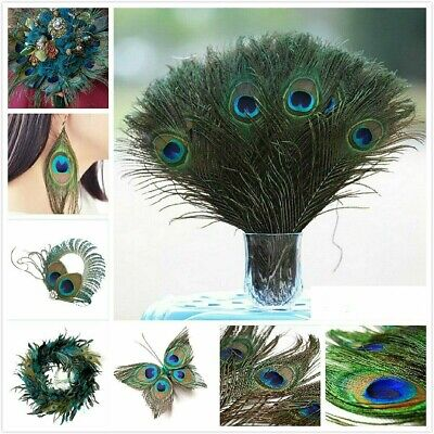 """10-100Pcs 100% Real Natural Peacock Feathers 10-12"""" Stage Costume Makeup Tool US"""
