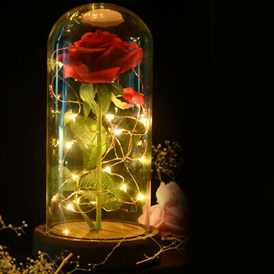 WR Beauty and the Beast Enchanted Red Rose Dome Lamp Glass Valentine's Gifts Her